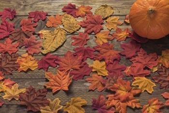 Jesień – czyli czas na dynię