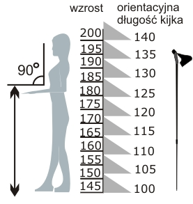 Pomiar kijów do nordic walking