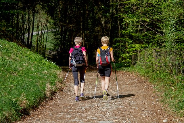 Nordic walking w lesie