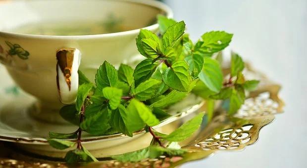 Jak dbać o zdrowie naturalnie i z rozwagą  cz. 4 zioła